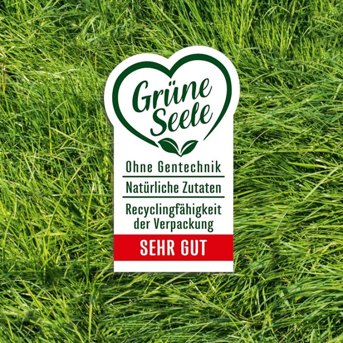 Grüne_Seele_gross21